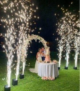 Wedding Cake - Fontane Luminose